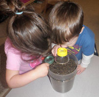 children looking at carrot seeds in soil through magnifying glasses